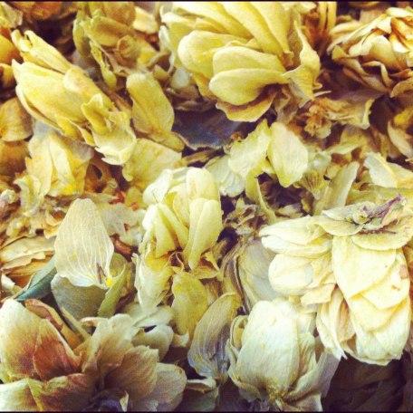 Schmidt's Natural Deodorants Odor Killing Hops Extract